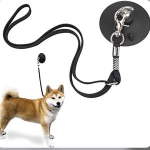 Dog Bathing Suction-Cup Tether